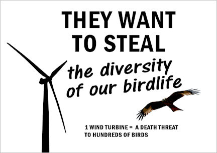 They want to steal the diversity of our birdlife
